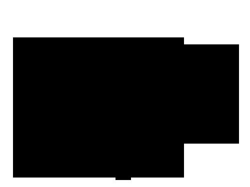 尾矿干排筛简图